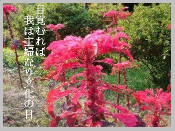 秋・文化の日