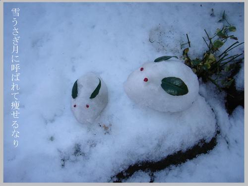 冬・雪うさぎ