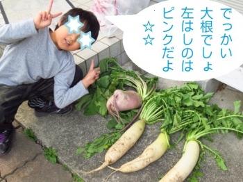 Photo_20201101023601