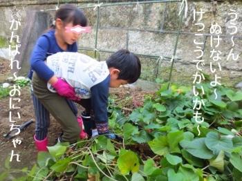 Photo_20201101032501